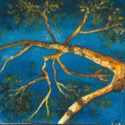 arbre lumière copie